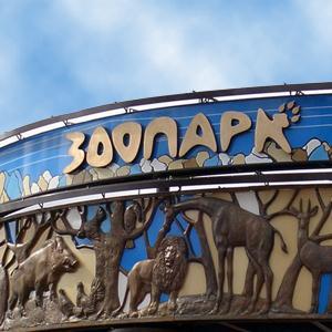 Зоопарки Больших Березников